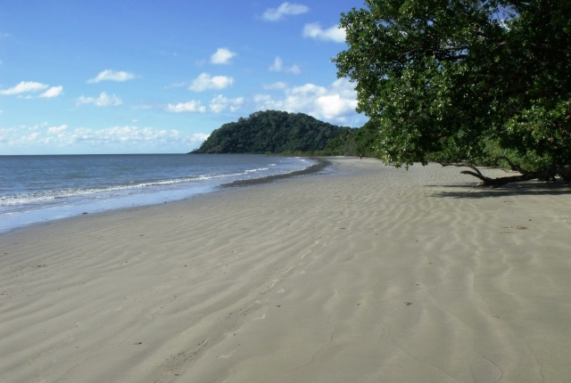 Cape Tribulation beach, looking south.