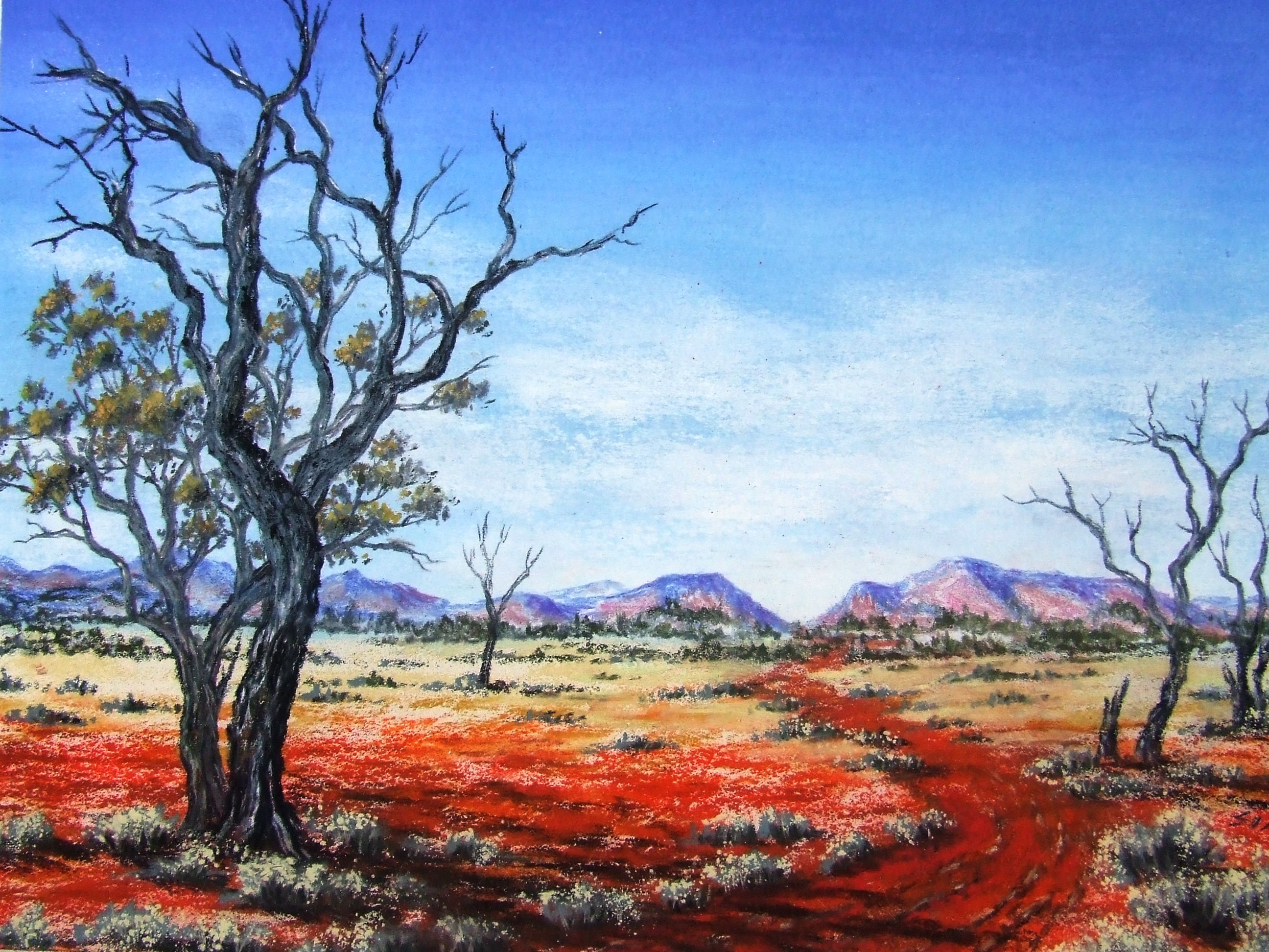 Australian outback pastel painting by sian butler for Australian mural artists