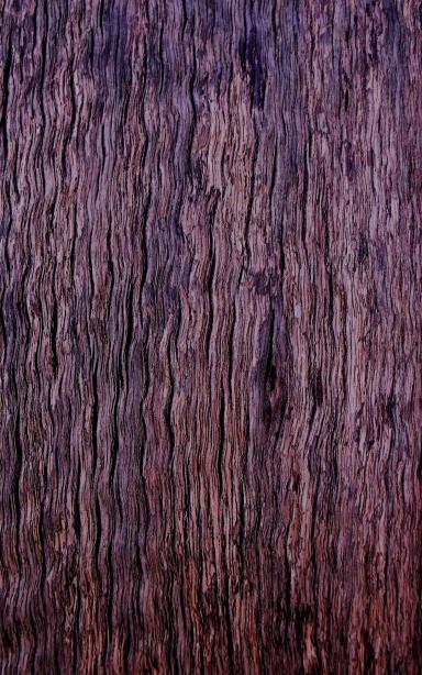 """Wavy"" timber."