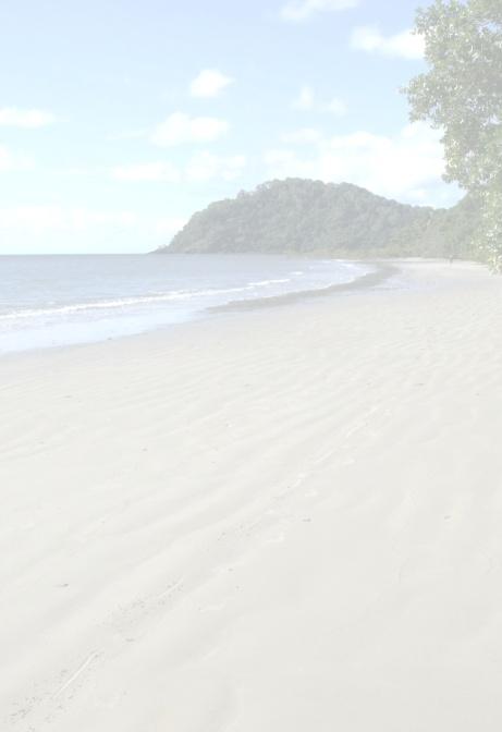 Pale background. Cape Tribulation beach, Australia.