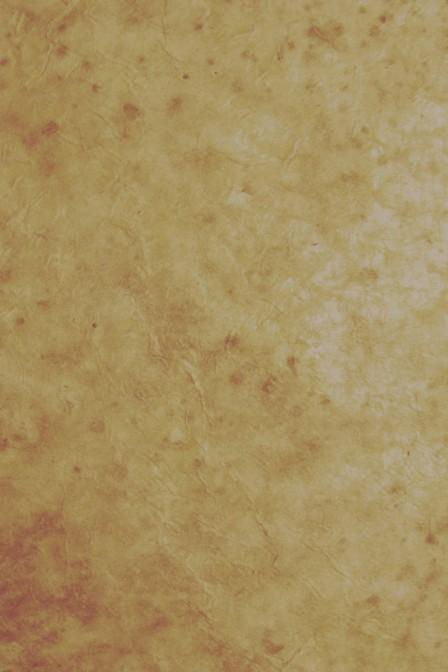 Light parchment background.