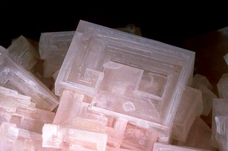 Halite crystals. Photo: mineralatlas.com.
