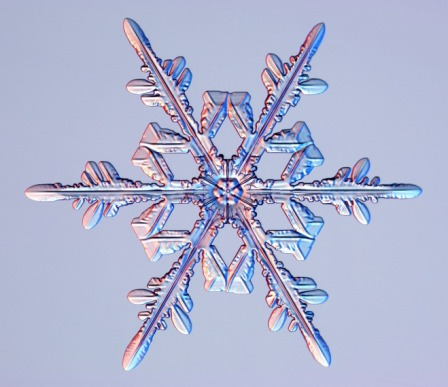 Snowflake. Photo: caltech.edu.