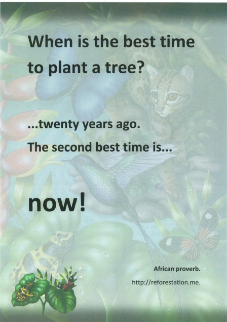 """""""When is the best time to planta tree?"""""""