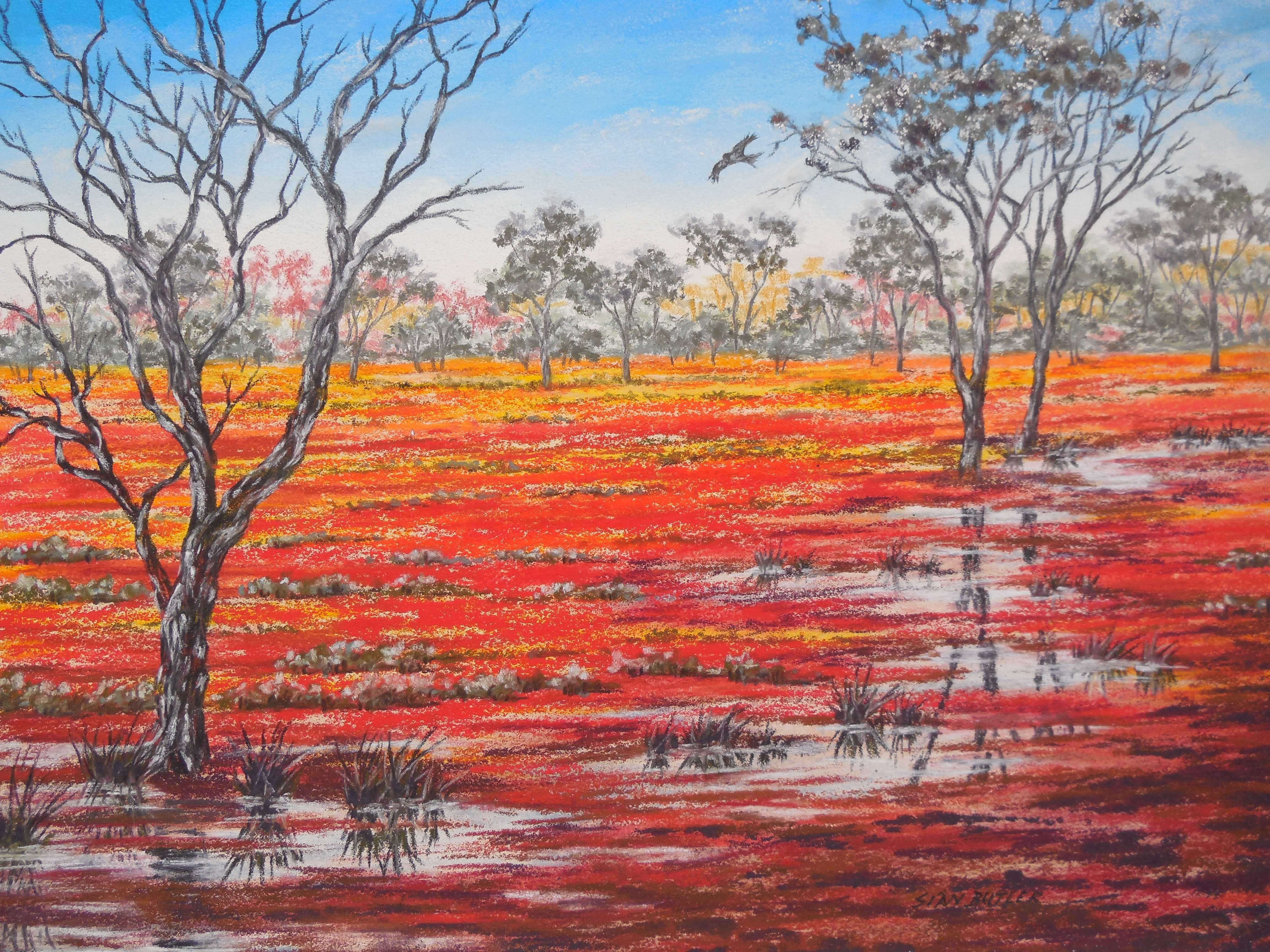 Australian Outback Paintings 2 Tracts4free