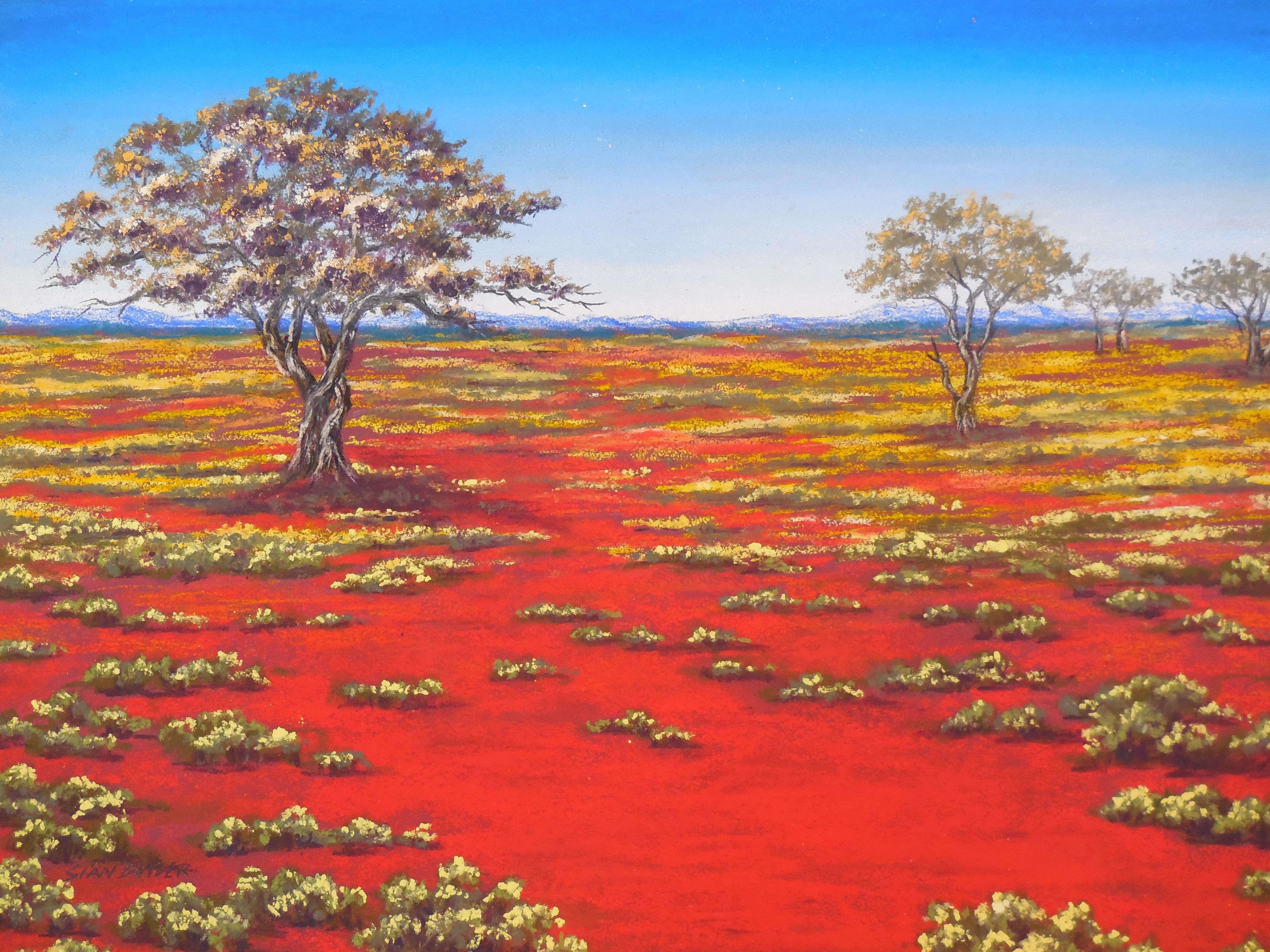 David Attenborough  Animal behaviour of the Australian