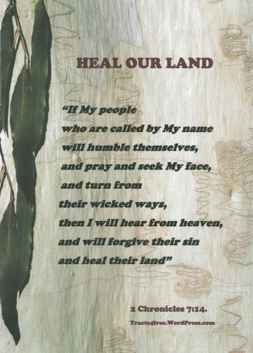 """Heal our Land"" poster."
