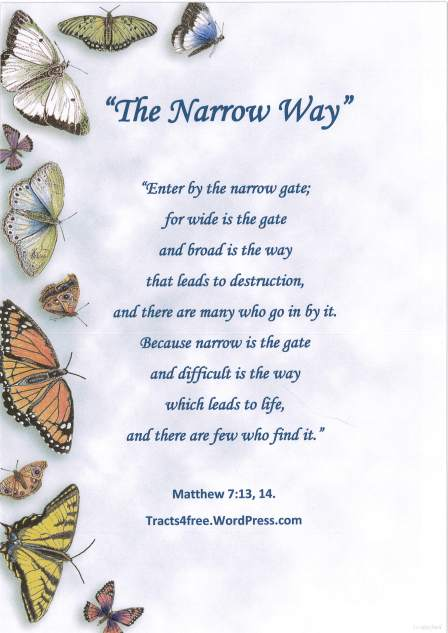 """The Narrow Way"" Christian poster."