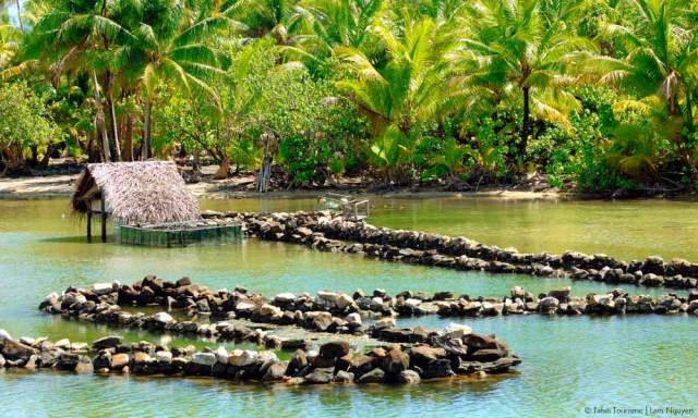 Fish trap made of stones, Tahiti.