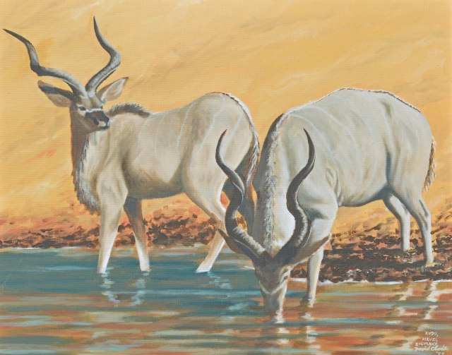 Kudu bulls at a waterhole, Mkuzi Game Reserve, Kwazulu Natal. Acrylic painting by David Clode.