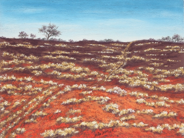 Burnt bush. Pastel Outback painting by Sian Butler.
