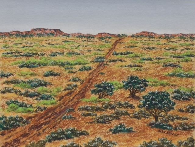 Bursting with new life after rain. Australian Outback landscape by Sian Butler.