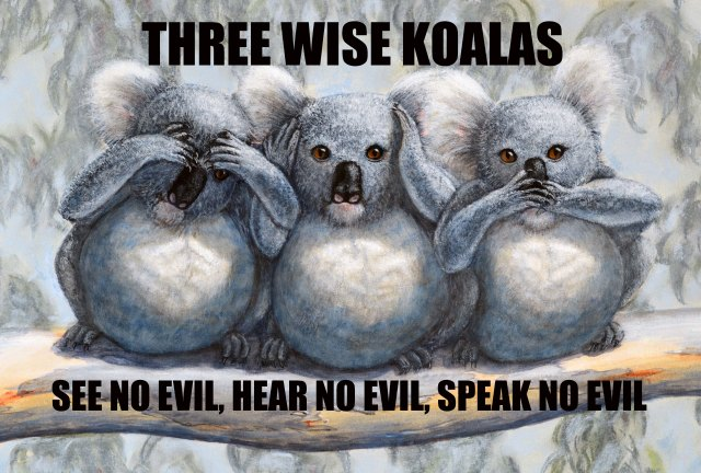 Three Wise Koalas poster. See no evil, Hear no evil, speak no evil. Painting by David Clode.