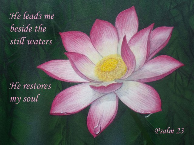Psalm 23 poster. Lotus lily.