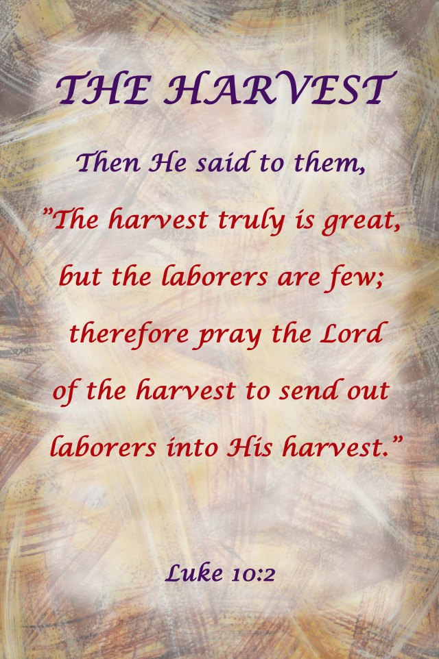 """His harvest"" Evangelism poster by David Clode."