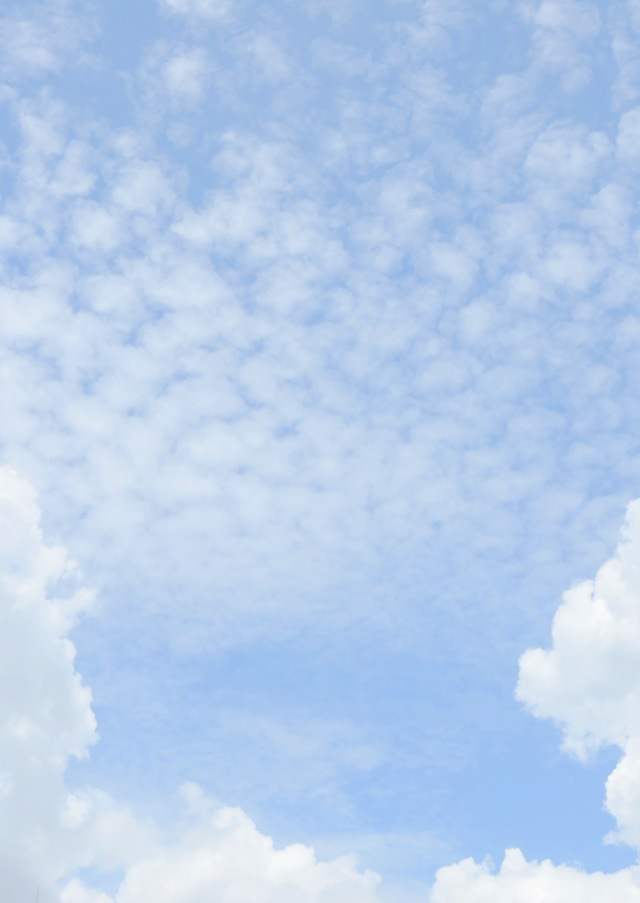 Dramatic cloudy sky background. Photo: David Clode.