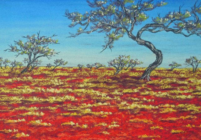 """Gidgee Trees"". Outback New South Wales. Pastel artwork by Sian Butler."