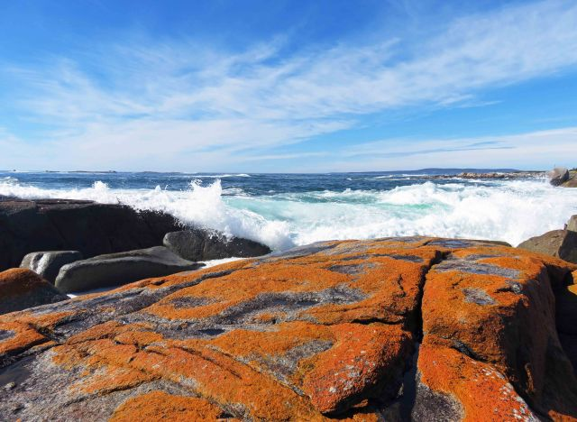 """The Gardens"" area, Bay of Fires Tasmania. Photo: David Clode."