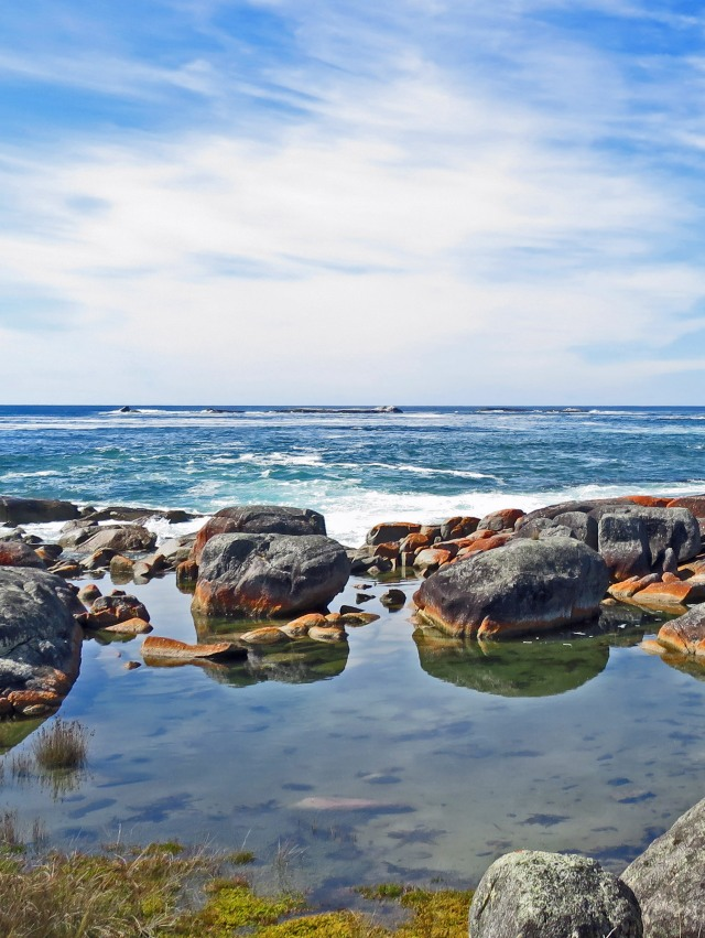 "Rock pool, ""The gardens"" area, bay of Fires, Tasmania. Photo: David Clode."