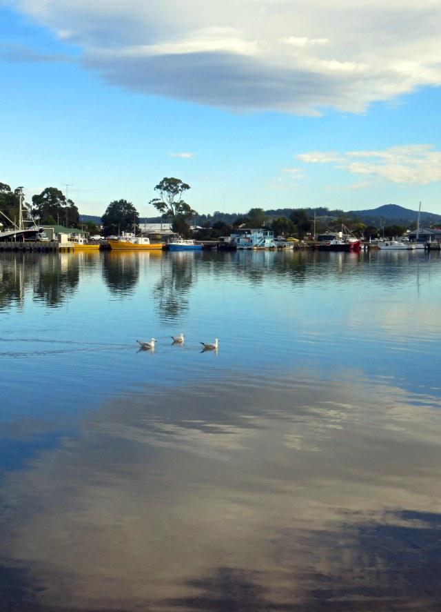 Georges Bay, St Helens, Tasmania. Photo: David Clode.