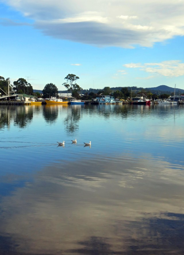 Georges Bay, St Helens, Tasmania. Photo: David Clode.