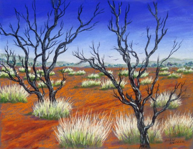 Spinifex country. Outback painting by Sian Butler.