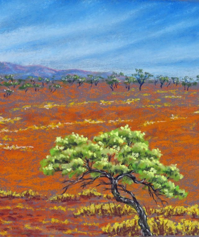 Wattle country. Outback pastel painting by Sian Butler.