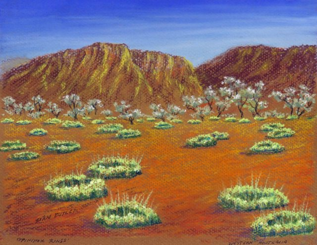Spinifex rings. Australian pastel painting by Sian Butler.