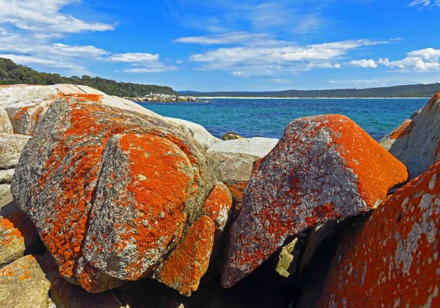 Burns Beach, bay of Fires, Tasmania. Photo: David Clode.
