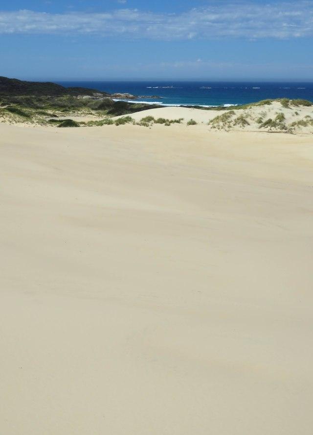 Peron dunes, Tasmania. Photo: David Clode.
