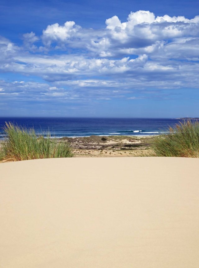 Peron Dunes, Tasmania. Photo: David Clode.
