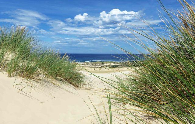 Peron Dunes, near Steiglitz/St Helens, Tasmania. Australian seascape Photo: David Clode.