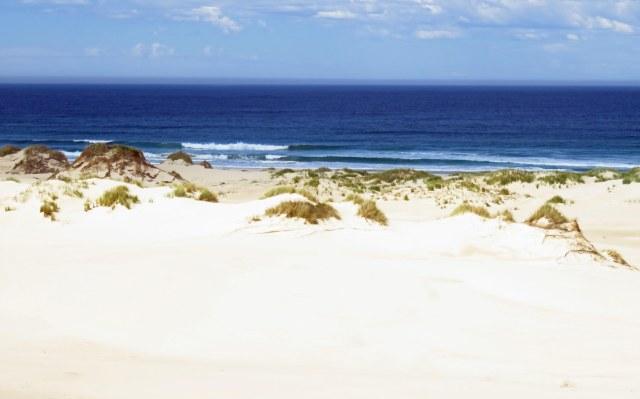 Peron Dunes, near steiglitz/St Helens, Tasmania. Photo: David Clode.