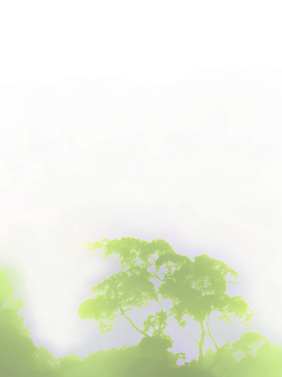 Misty tree. Artwork by David Clode