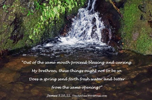 James 3: Scripture poster.