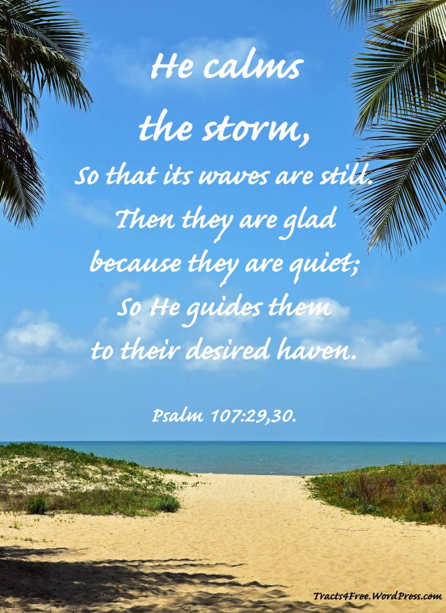 """He calms the storm"" Bible verse poster. Photo taken at Yorkeys beach, Cairns, Australia, with coconut palm fronds left and right. Photo and poster by David Clde."