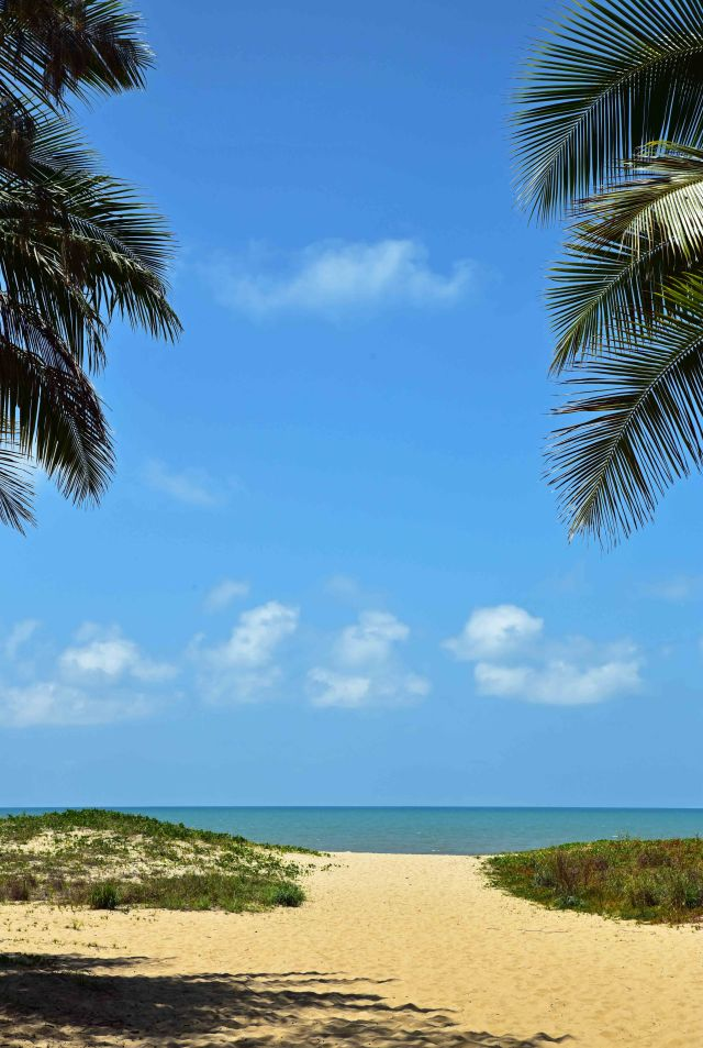 Tropical poster background. Yorkeys beach, Cairns, Australia. Photo: David Clode.