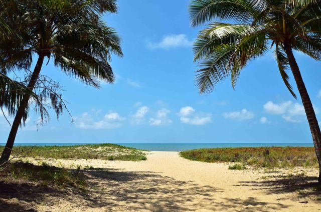 Tropical beach scene. Yorkeys, Cairns, Australia. Photo: David Clode.