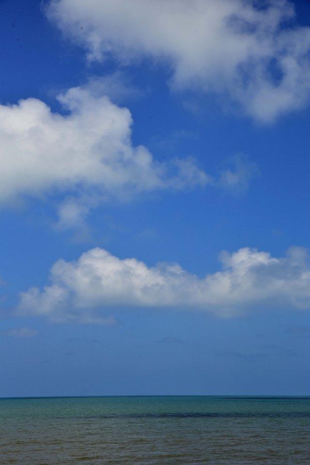 Tropical poster background. Yorkeys,, Cairns, Australia. Photo: David Clode.