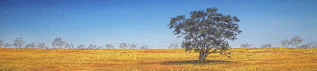 Outback panorama by Sian Butler.