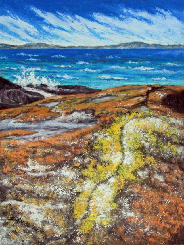 """Colourful Lichen"". Bay of Fires (""The Gardens"" area), Tasmania. Australia. Seascape pastel by Sian Butler."